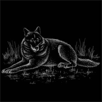 Волк для татуировки или дизайна футболки или верхней одежды.