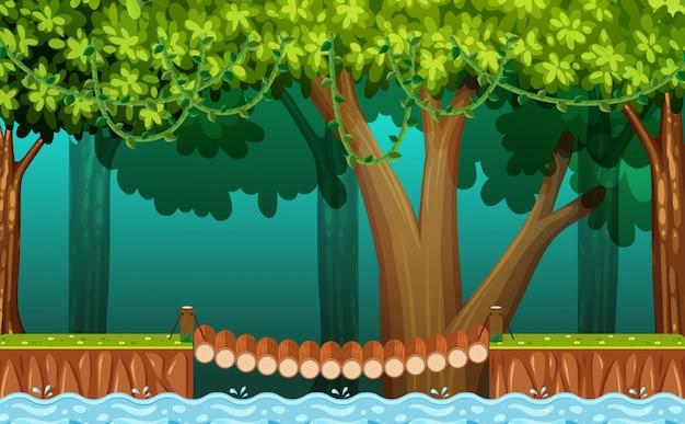 숲에서 나무 다리