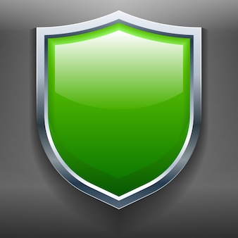 This illustration is a render of a shield.