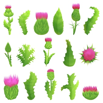 Thistle icons set. cartoon set of thistle  icons for web