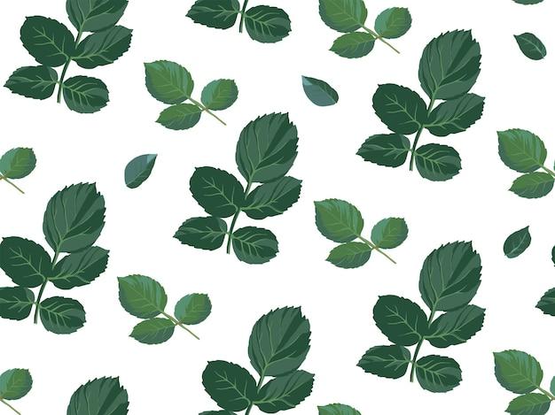 バラの花の茎のとげと葉。白の花飾りまたは装飾。繁栄する植物学、野生植物。グリーティングカードの壁紙や背景のプリント。シームレスなパターン、フラットでベクトル