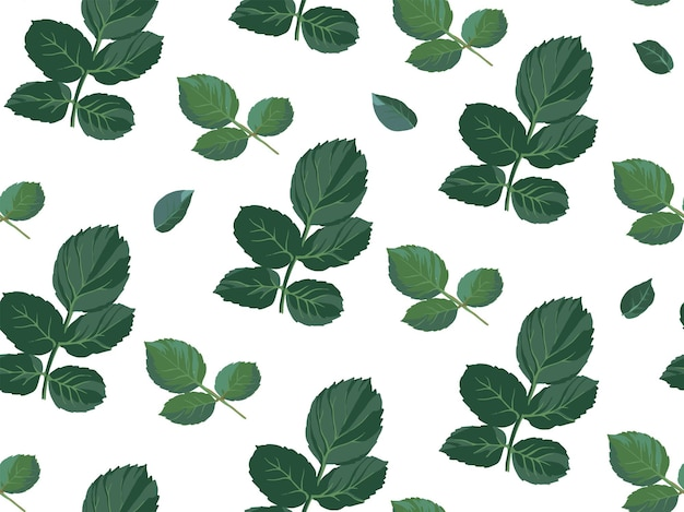 Thorns and leaves of stem of rose flower. floral ornament or decoration on white. flourishing botany, wild plant. wallpaper or background print for greeting card. seamless pattern, vector in flat