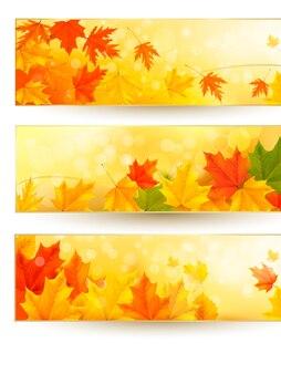 金色のフレームにカラフルな葉を持つ3つの秋のバナー