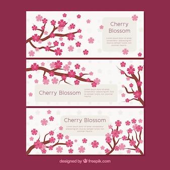 Три баннеры с ветвей вишни
