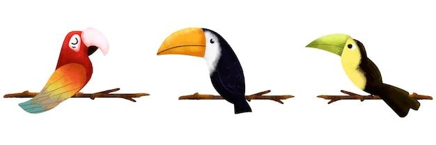 白い背景の上の3羽の鳥のイラスト