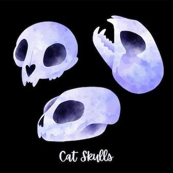 세 고양이 해골 귀여운 만화 그리기 손으로 그린