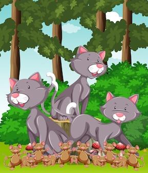 公園で3匹の猫とたくさんのネズミ