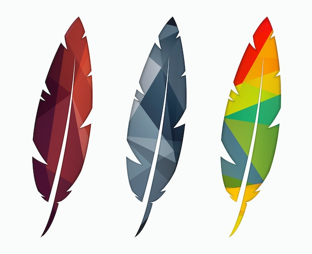 Three colored abstract polygonal feathers