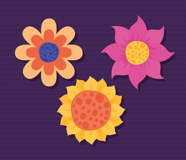 Три цветных цветка