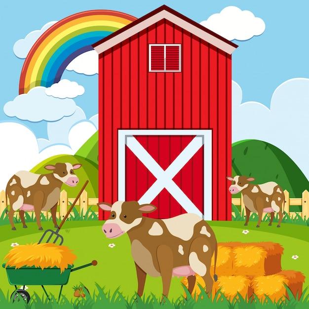 3つの牛と農場の赤い納屋