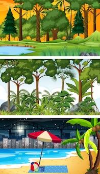 Три разных лесных горизонтальных сцены