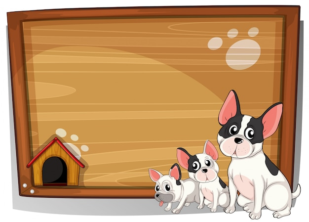 Three dogs in front of a wooden board