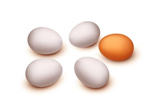 分離された3つの卵