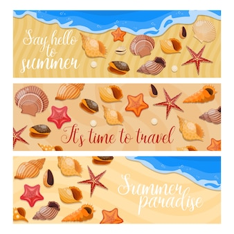 Three horizontal isolated shells and sea stars banner set with say hello to summer and different descriptions