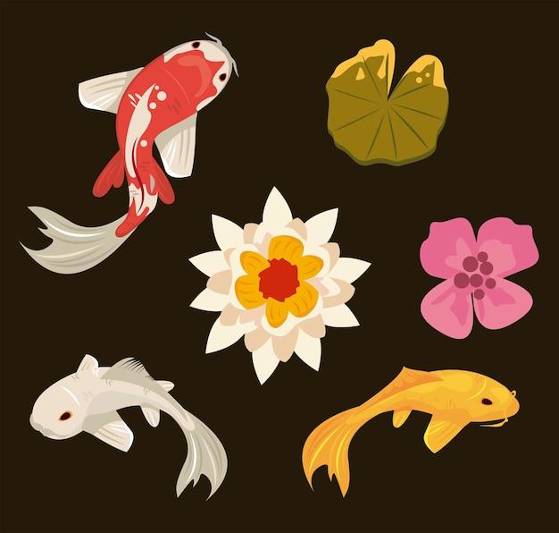 Three koi fishes