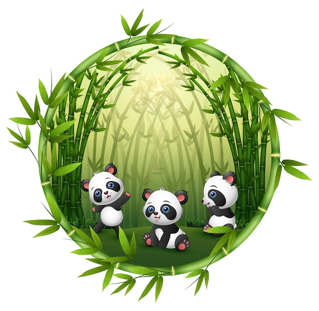 Three little panda are playing together