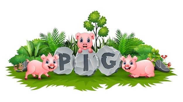 庭で遊ぶ3匹の小さな豚