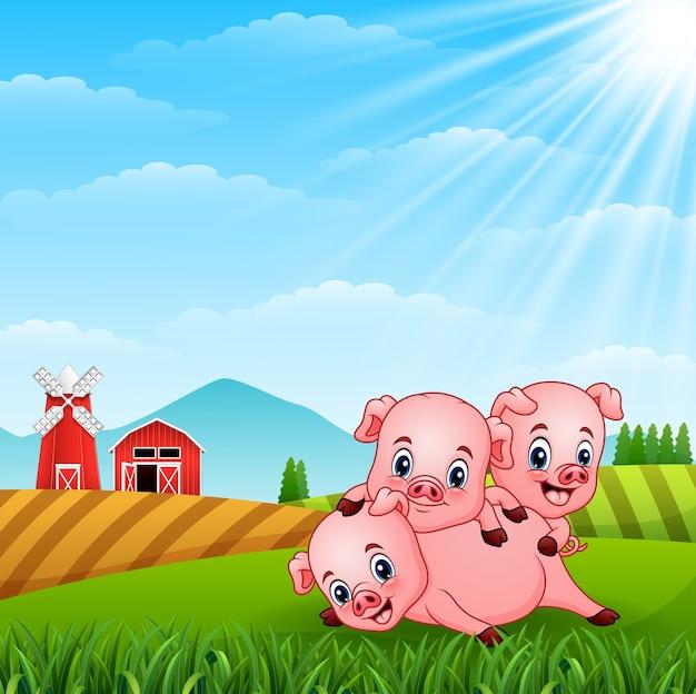 丘で遊んでいる3匹の小さな豚