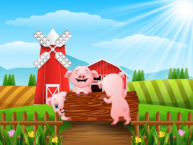農場で遊んでいる3匹の小さな豚