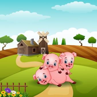 3人の小さな豚が丘で遊ぶ