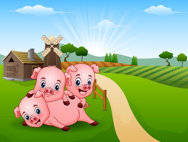 朝3人の小さな豚が遊んでいる