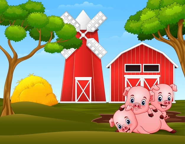 Three little pigs are playing at the farm