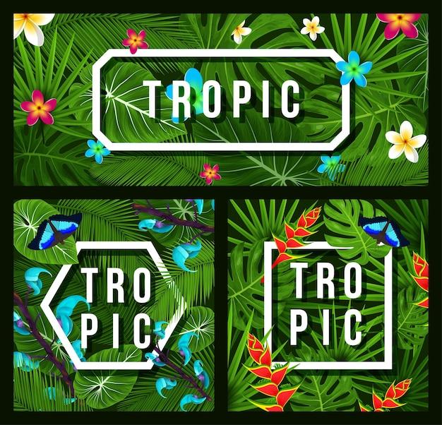 Three modern tropical background jungle leaves plumeria tropical flowers