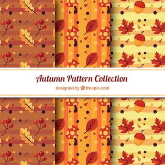 Three patterns with autumn leaves