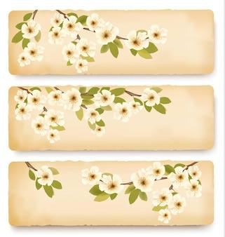 봄 꽃과 함께 꽃이 만발한 나무 브런치와 3 개의 복고풍 봄 배너.