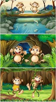 森の3つのシーン