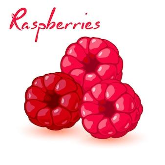 3 개의 달콤한 익은 열매.
