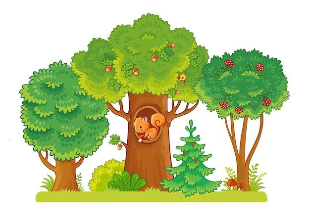 ベリーとどんぐりのある空き地にある3本の木リスがくぼみに座っています