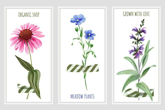 Три вертикальных баннера с полевыми цветами и лентой