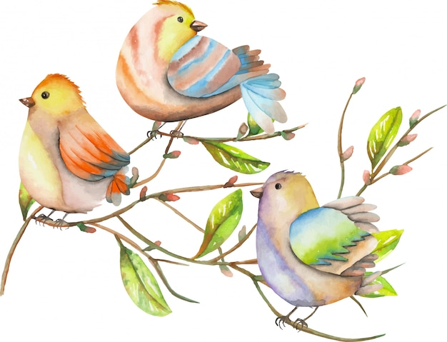 Three watercolor birds on tree branches, spring illustration