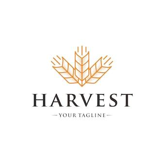 Three wheat logo template