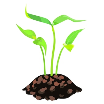 흰 바탕에 두 개의 잎이 있는 세 개의 어린 식물