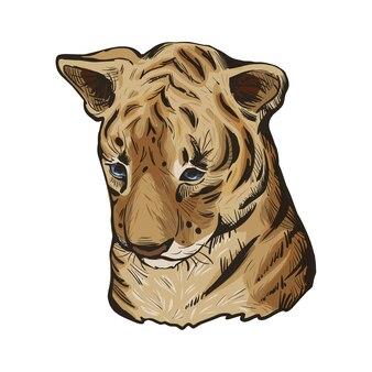 Ребенок тигра, портрет экзотических животных изолированных эскиз. рисованной иллюстрации.