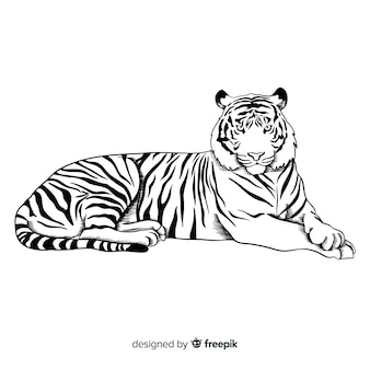 Tiger background