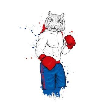 Тигр-боксер с атлетическим телосложением. Premium векторы