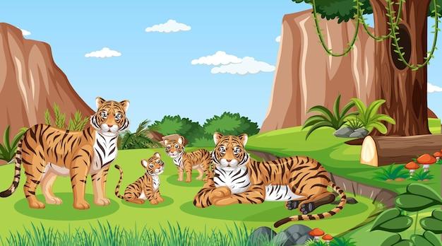 낮 장면에서 숲에서 호랑이 가족