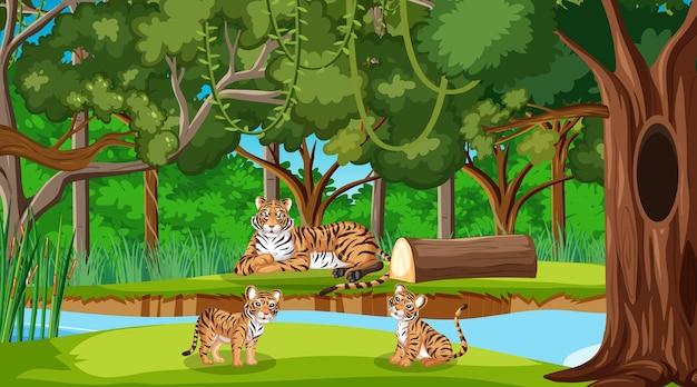 Семья тигров в лесу или сцена тропических лесов с множеством деревьев