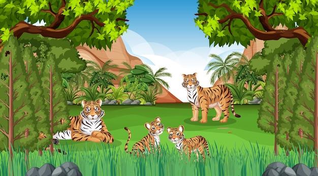 Семья тигров в лесу или сцена тропического леса с множеством деревьев