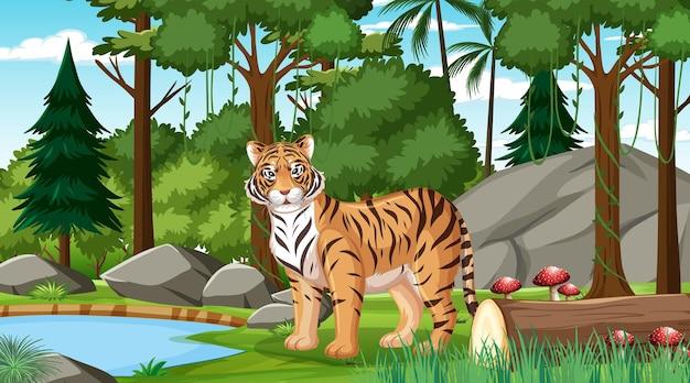 Una tigre nella scena della foresta o della foresta pluviale con molti alberi