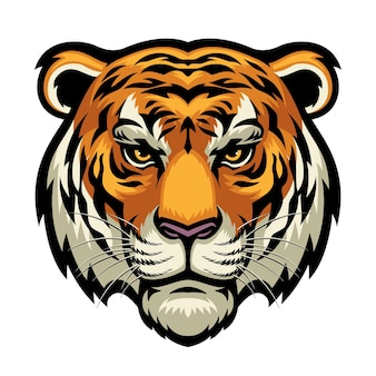 Tiger head isolated on white