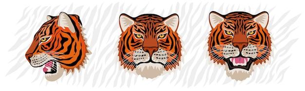 Набор головы тигра рисованной иллюстрации