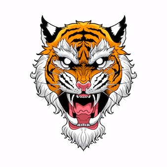 Tiger head with in white background