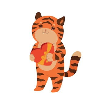 Tiger holding a box of chocolates isolate on a white background. vector graphics.