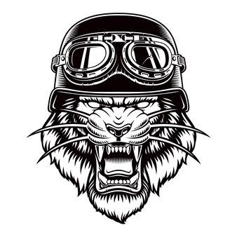 白で隔離のバイカーヘルメットの虎