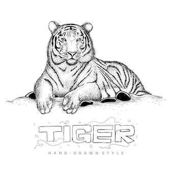 Tiger sitting relaxing, illustration of animal in hand drawing