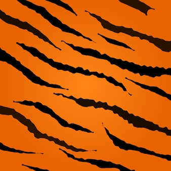 Tiger skin pattern. collection of animal texture.